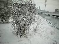 Pic_0023_2